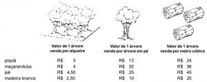 paragominas2004
