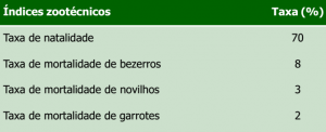 tab4_anexoIndices