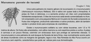 tucumaAM_murumuru