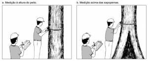 cap2_fig5_Medicao