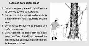 cap3_fig3_Tecnicas