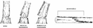 cap7_fig13_Desperdicio