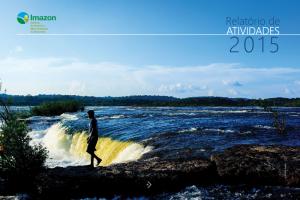 relatorio-atividades_2015_destaque