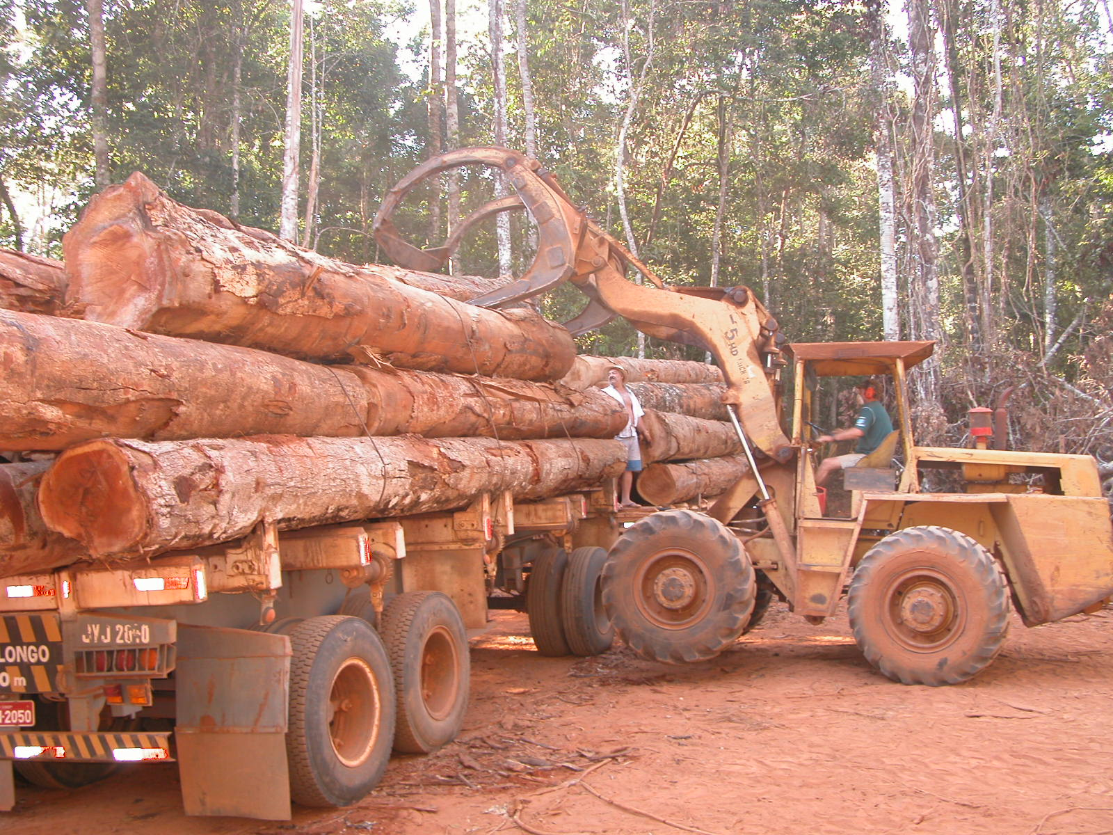 DSCN1942 1 - Exploração ilegal de madeira cresce 63% em Mato Grosso