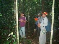 artigocie24 - Uma abordagem integrada de pesquisa sobre o manejo dos recursos florestais na Amazônia Brasileira