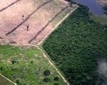 artigocie48 150x120 - Road building, land use and climate change: prospects for environmental governance in the Amazon
