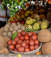 preco floresta - Índice de Preços de Produtos da Floresta - Segundo Semestre de 2011