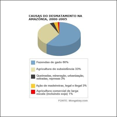 2113036 amazonia5 1 - Desmatamento01