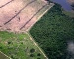 artigocie292 150x120 - Road building, land use and climate change: prospects for environmental governance in the Amazon