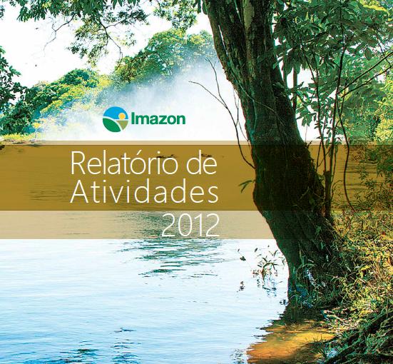 atividades 2012 551x510 - Relatório de Atividades 2012