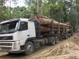 congresso15 - Avaliação de Planos de Manejo Florestal na Amazônia através de imagens de satélites Landsat