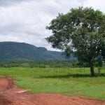 deforestation in land 150x150 - Deforestation in Protected Areas in the Brazilian Amazon: the case of Rondonia.