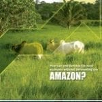 how can one develop 150x150 - How can one develop the rural economy without deforesting the Amazon?