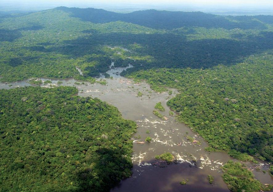 Plano de Manejo da Floresta Estadual de Trombetas - Imazon
