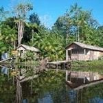millenium development 150x150 - The Brazilian Amazon and the Millenium Development Goals.