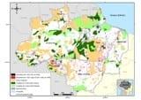 transparencia florestal amazonia - Boletim Transparência Florestal Amazônia Legal (Abril de 2008)