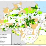 april g 1 150x150 - Deforestation April 2010