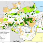 august g 1 150x150 - Deforestation August 2010