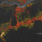 Captura de tela 2014 09 12 às 15.45.48 150x150 - Roads, deforestation, and the mitigating effect of protected areas in the Amazon
