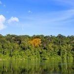 indice progreso 150x150 - Índice de Progresso Social na Amazônia Brasileira: IPS Amazônia 2014