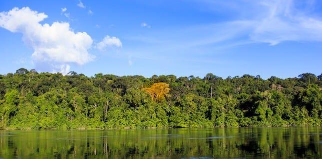 indice progreso - Índice de Progresso Social na Amazônia Brasileira: IPS Amazônia 2014