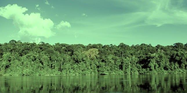 indice progresso executivo - Social Progress Index for the Brazilian Amazon: IPS Amazônia 2014 (Executive Summary)