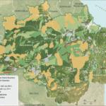 sadjuly 150x150 - Deforestation Report (SAD) July 2014