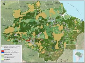 Deforestation August 2014
