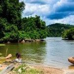 10636824 860524773967375 5000417858042409776 o 1 150x150 - Áreas protegidas do Brasil sob ameaça