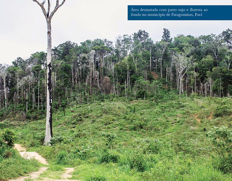 ITR img 02 1 - Baixo preço da terra pública para regularização fundiária estimula grilagem, desmatamento e conflitos agrários