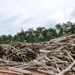 Desmatamento 150x150 - Brazilian environmentalists urge the Congress to reject Amazon deforestation new bill