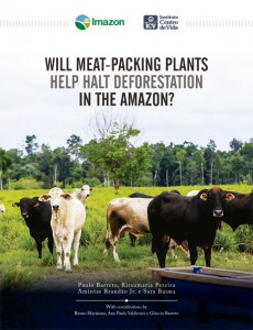 Meat-Plancking Deforestation