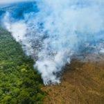 AA25117 Araquem de Alcantara 150x150 1 - Um terço do desmatamento da Amazônia ocorreu em Unidades de Conservação no mês de maio.  Destruição das florestas segue em ritmo de aumento.