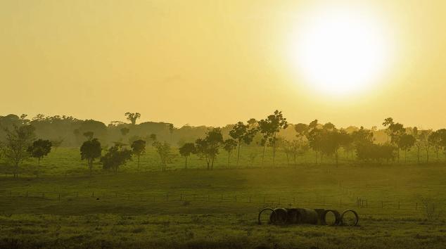 Captura de Tela 2017 05 02 às 11.09.15 - Diagnóstico dos fatores chaves de sucesso para a restauração da paisagem florestal: Município de Paragominas e Estado do Pará