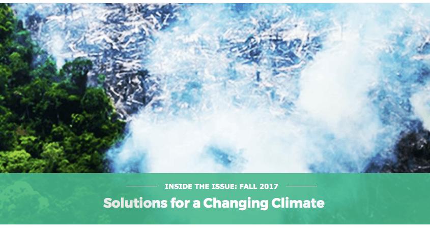 Captura de Tela 2017 10 04 às 13.03.08 845x451 - Artigo publicado pela Fundação Skoll (EUA) destaca o trabalho do Imazon no combate ao desmatamento na Amazônia