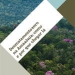 Desmatamento zero como e por que chegar la 1 150x150 - Desmatamento zero na Amazônia: como e por que chegar lá