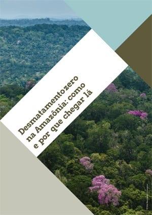 Desmatamento zero como e por que chegar la 1 - Desmatamento zero na Amazônia: como e por que chegar lá