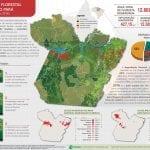QueimadasExploracao A5 210x148 WEB 2 150x150 - Degradação Florestal no estado do Pará (agosto de 2015 a julho de 2016)