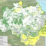 SAD Nota dezembro 2016 150x150 - Nota informativa – Transparência Florestal (SAD) dezembro de 2016