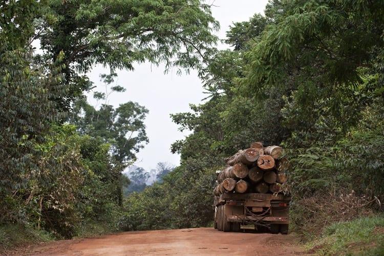 Simex Adriano Gambarini1 - Imazon apresenta análise da exploração madeireira no Pará entre 2015 e 2016