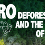 Zero Deforestation 150x150 - Zero Deforestation and the future of Brazil