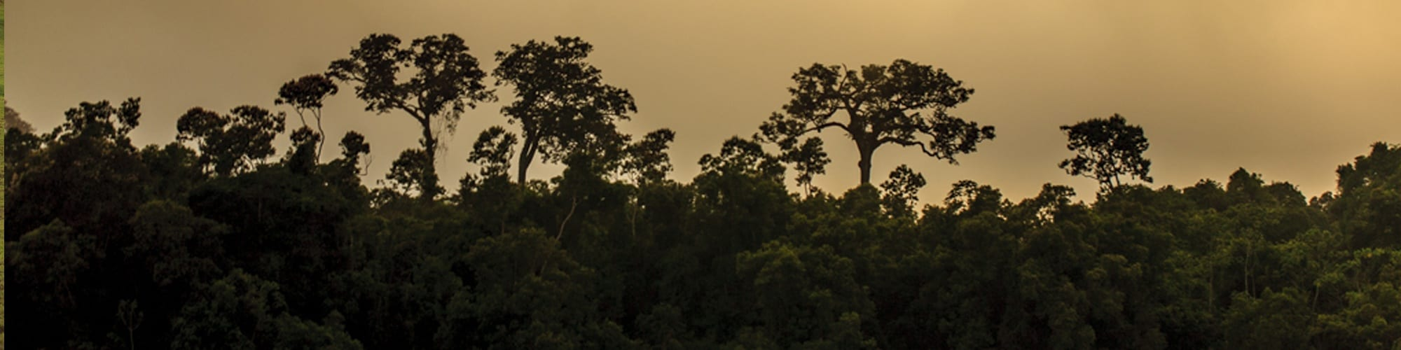 areas protegidas - Protected Areas