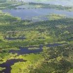 destaque desmatamentozeroPA 150x150 - Desmatamento Zero no Pará: desafios e oportunidades