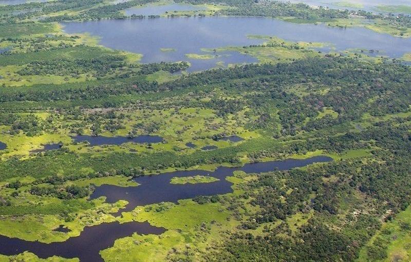 destaque desmatamentozeroPA 800x510 - Desmatamento Zero no Pará: desafios e oportunidades