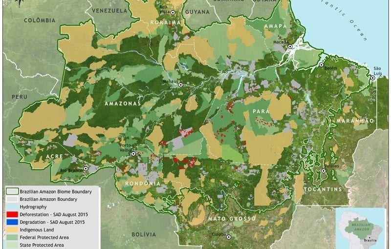 mapa sad desmat 08 2015 bioma INGLES ok 800x510 - Deforestation report for the Brazilian Amazon (August 2015) SAD