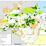 marco g1 150x150 - Deforestation March 2010