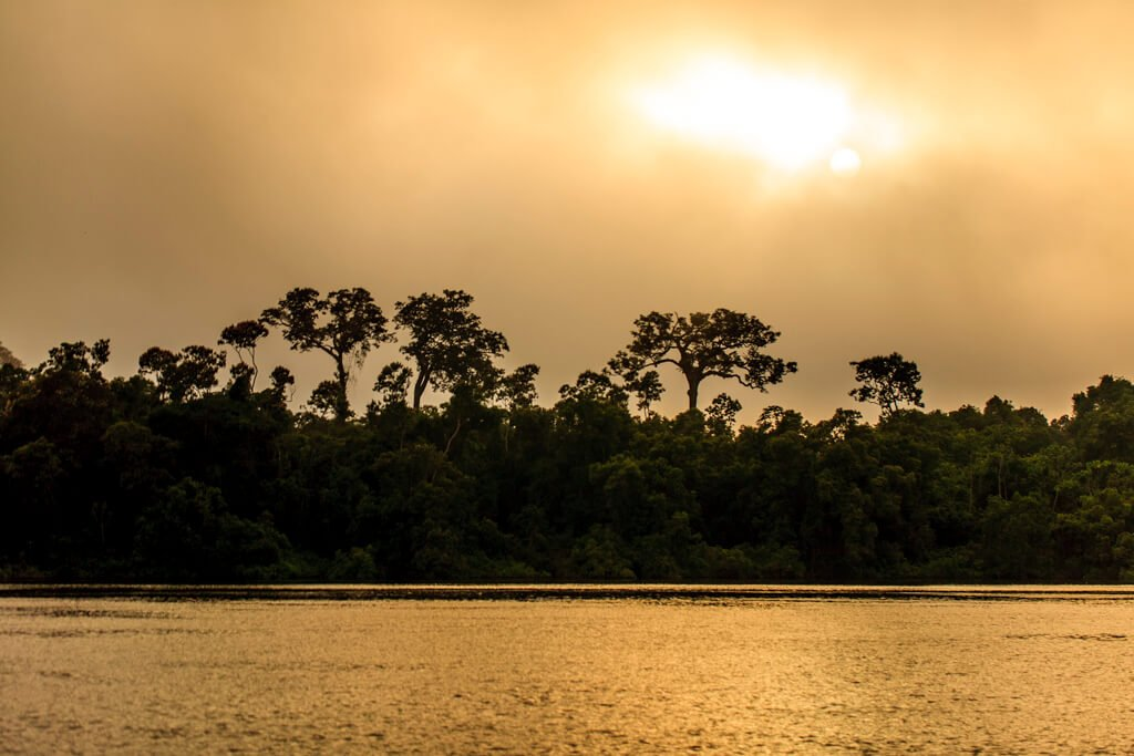 Forest Management Transparency Report – State of Pará (2011 to 2012)
