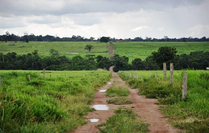 Fundiario 800x510 - O Estado da Amazônia: Potencial de Arrecadação Financeira com a Regularização Fundiária no Pará
