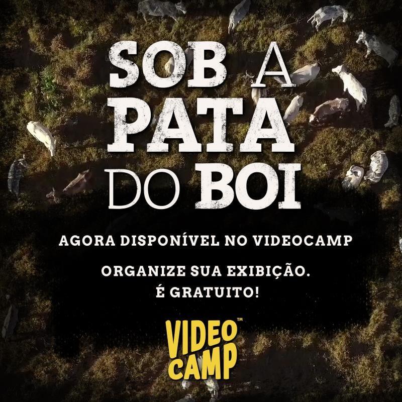 """Pata do boi - Filme """"Sob a Pata do Boi"""" já pode ser assistido online"""