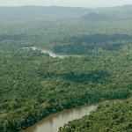 EstadoAps desmatamento 150x150 - Imazon divulga dados do desmatamento na Amazônia e aponta aumento em comparação com janeiro do ano passado